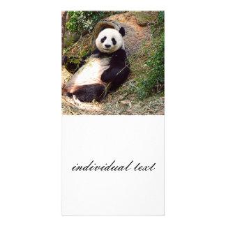 Panda 0315P Photo Card