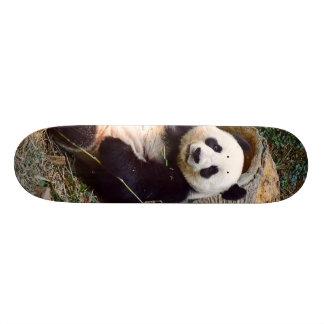 Panda 0315P Skateboard Deck