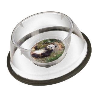 Panda 0315P Pet Bowl