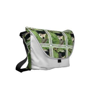 panda-4.jpg bolsas de mensajeria