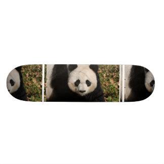 panda-92 skateboard deck
