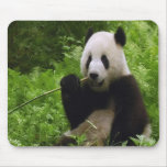 Panda Alfombrillas De Ratón