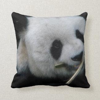 Panda Almohadas