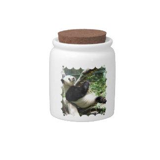 Panda and Bamboo Candy Jar