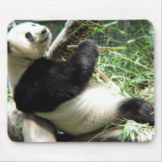 Panda and Bamboo Mouse Pad