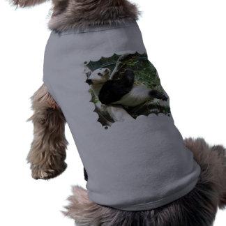 Panda and Bamboo Pet Shirt