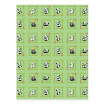 Panda Bamboo Bear Postcard