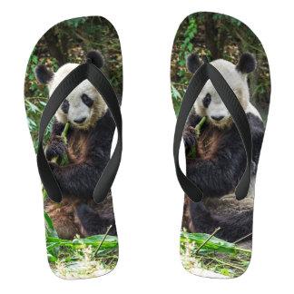 Panda Bear 1 Flip Flops