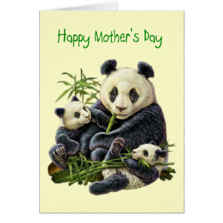 Panda Bear and Cub Mother's Day Card (Blank)