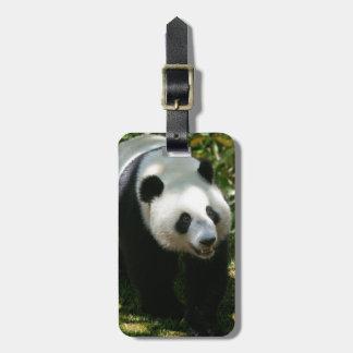 Panda Bear Bag Tag