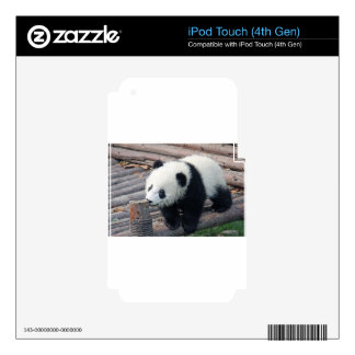 panda bear bears custom personalize Anniversaries iPod Touch 4G Decal