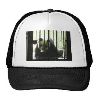 Panda Bear Behind Bars Trucker Hat