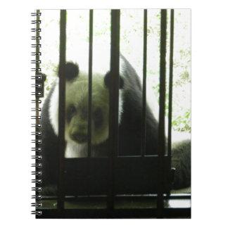 Panda Bear Behind Bars Notebook