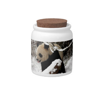 Panda Bear Candy Jar