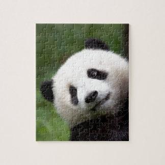 Panda Bear Cub Jigsaw Puzzle