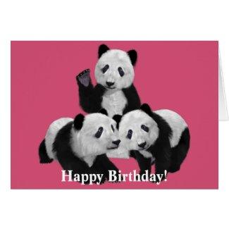 Panda Bear Cub Love Birthday Card Greeting Card