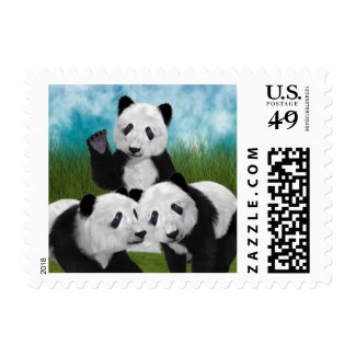 Panda Bear Cub Love Stamps
