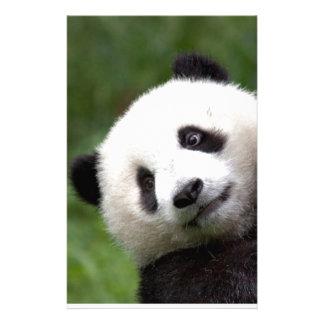 Panda Bear Cub Stationery