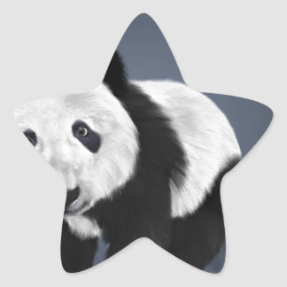 panda bear cute cuddly animal black white sweet star sticker
