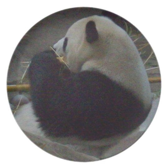 Panda Bear Eating Bamboo Plate