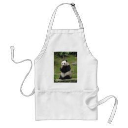 Panda Bear eating some bamboo Adult Apron