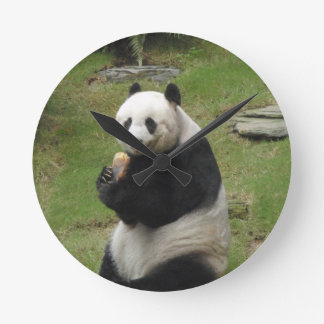Panda Bear eating some bamboo Round Clock