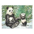 Panda Bear Family in Winter Postcard