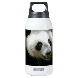 Panda Bear Insulated Water Bottle