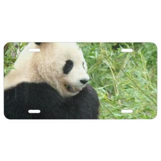 Panda Bear License Plate