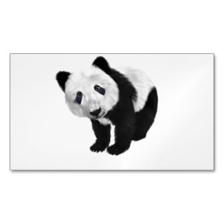 Panda Bear Magnetic Business Card
