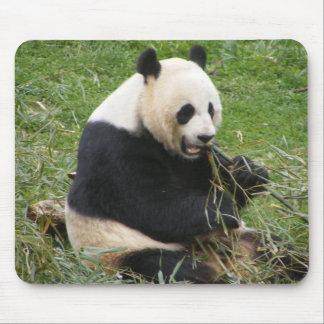 Panda Bear Mouse Mat