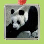 Panda Bear on Rocks Metal Ornament