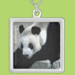 Panda Bear on Rocks Square Pendant Necklace