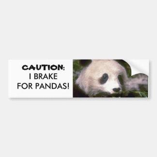 PANDA BEAR PHOTO CAR BUMPER STICKER