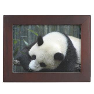 Panda Bear Memory Box