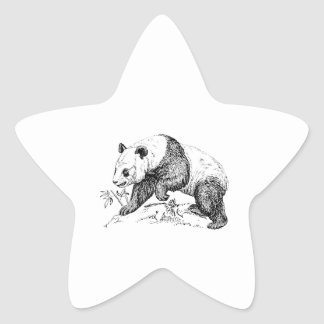 Panda Bear Star Sticker