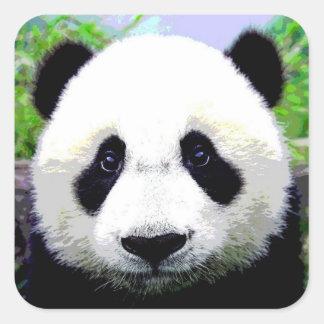 Panda Bear Square Sticker