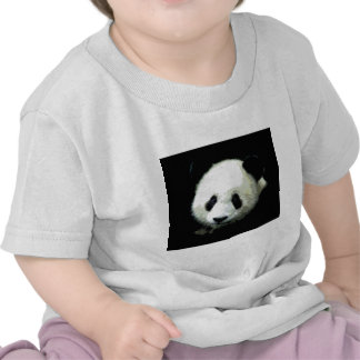 Panda Bear Tshirt