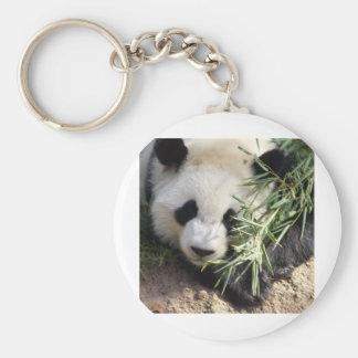 Panda Bear @ Zoo Atlanta Basic Round Button Keychain