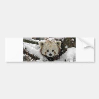 Panda Bearcub del Fox rojo Pegatina Para Auto