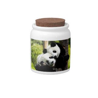 Panda Bears Candy Dish