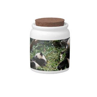 Panda Bears Candy Jar
