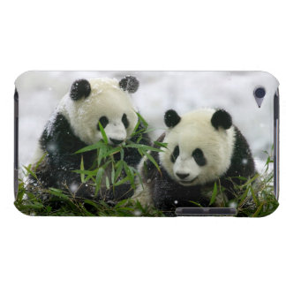 Panda Bears iPod Touch Case-Mate Barely There