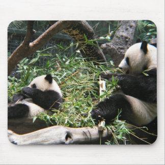 Panda Bears Mouse Pad