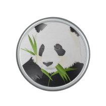 Panda Bears Speaker