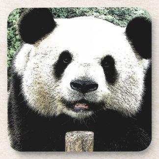 Panda Beverage Coaster