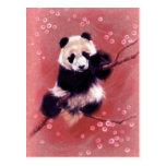 Panda Blossom Postcards