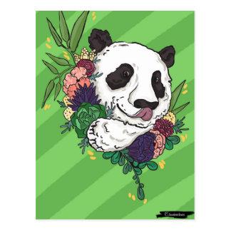 Panda bonita postal