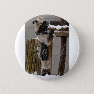 Panda Boost Pinback Button