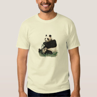PANDA BRET SHIRT FOTC FLIGHT OF THE CONCHORDS